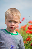 Serious boy in field with red poppies