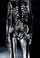 Digital visualization of a glassy female body
