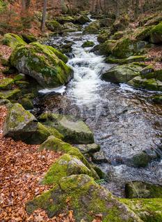 Nationalpark Harz Ilsetal Ilsefall