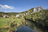 Die Donau im Naturpark Obere Donau