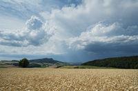 Gewitterstimmung im Hegau mit Weizenfeld