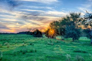 sunset on south carolina farm land
