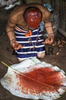 Achiote pods for hair style of Indian man Los Tsachila tribe, Ecuador