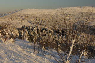 Winterlandschaft im Nordschwarzwald