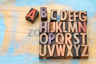 alphabet in vintage wood type