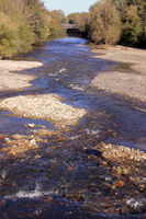 Ecological management of river banks