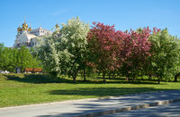 View of blossoming spring park in Yekaterinburg and the Temple of St Nicholas in the background.