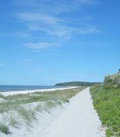 D--Hiddensee--Strand zwischen Kloster und Vitte2.jpg