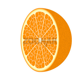 Orange Frucht. Vektor EPS10