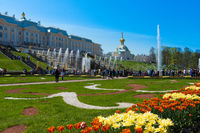 The Grand Palace In Peterhof
