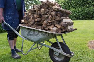 Mit Schiebetruhe getrocknetes Brennholz einbringen