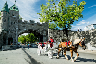 Carriage Trade in Old Quebec