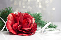 red rose with festive background