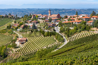 Vineyards and small town on the hill in Italy.