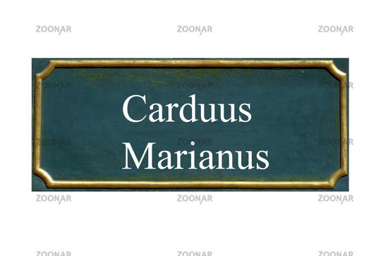 shield carduus marianus