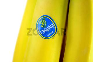 Miss Chiquita logotype on the fresh banana