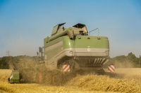 Rear view of a combine harvester during harvesting on a cornfield.