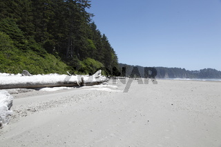 Second beach,Olympic Nationalpark