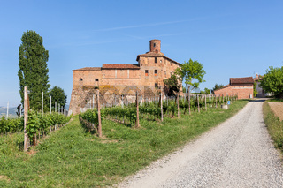 Vineyards and old castle in Italy.