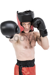 Boxer performing upright stance