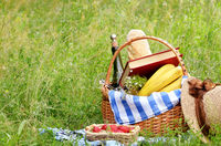 Picnic basket book strawberry and hat