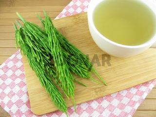 Tee vom Ackerschachtelhalm