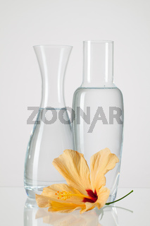 Two vases with clean water and hibiskus flower