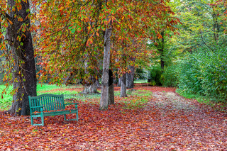 Bench in autumnal park.