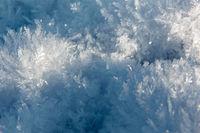 A landscape of snow mist