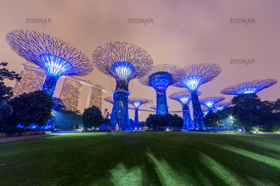 Supertree Grove in Gardens by the Bay Singapore