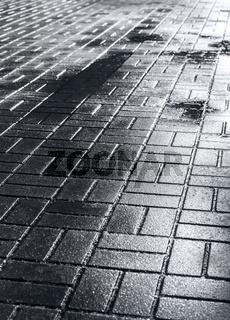 wet tiled sidewalk after rainy day