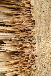 broken wood