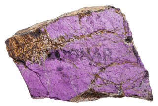 piece of purpurite rock isolated on white