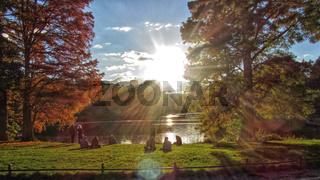 Herbstsonne im Lietzenseepark