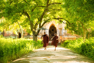 Young Buddhist novice monks running