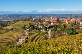 Autumnal vineyards and small town in Italy.