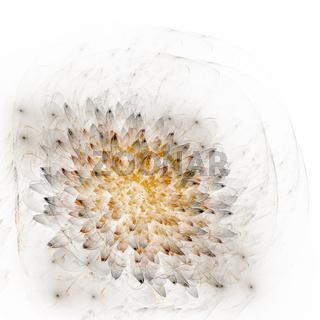 Hintergrund floral
