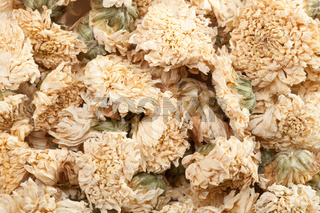 Dried Chrysanthemum Flowers