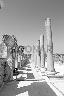 the column    old  stone  in  perge construction asia turkey and  roman temple