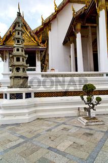 pavement gold    temple   in   bangkok  bonsai