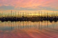 Colors of Emeryville Marina