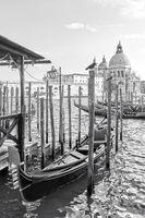 Gondolas and Santa Maria della Salute church in Venice