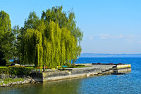 Idyllic park at the shores of Lake Constance, Romanshorn at Lake Constance, Switzerland