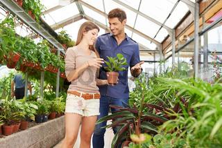 Paar kauft Pflanzen in Gärtnerei
