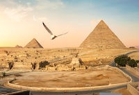 Sphinx and pyramids