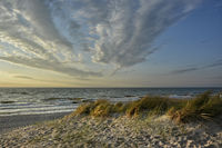 baltic resort of Ahrenshoop
