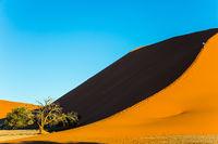 Tourists climb the ridge of the dune