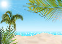 Summer Beach with Palms and Sea Background