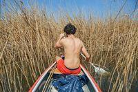Canoe tour facing overgrown waters
