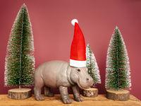 hippopotamus with santa claus hat